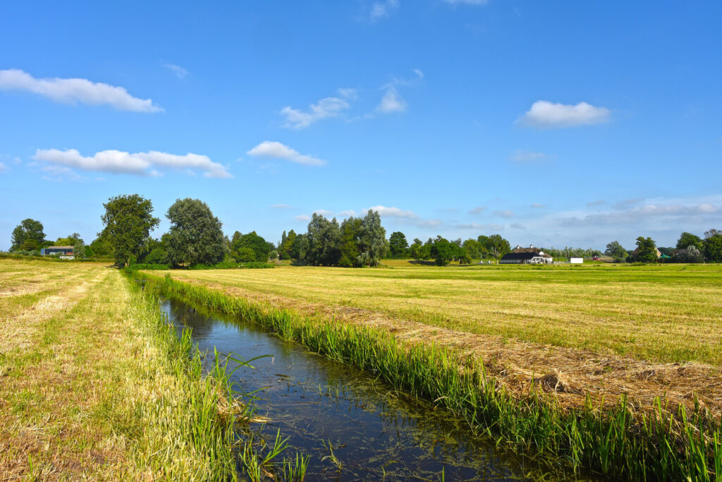 Ett dike som rinner emellan två gröna fält.