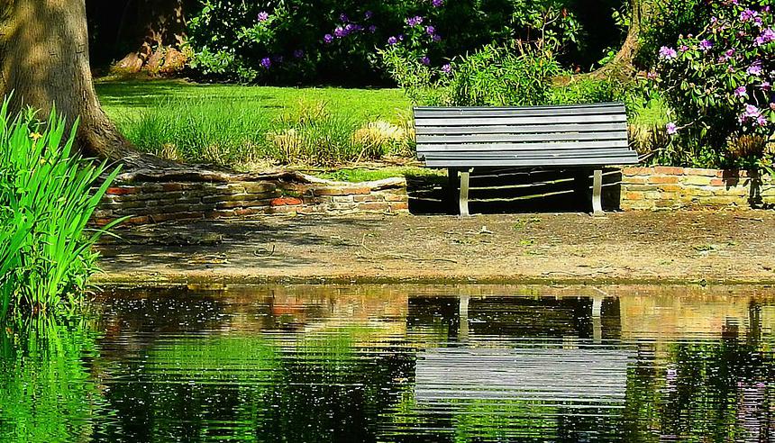 En bänk i trä vid en strand i en park.