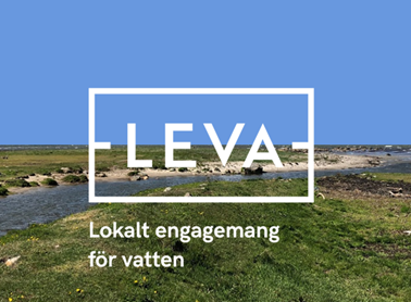 Logotypen för LEVA-projektet, med ett vattendrag, grönt gräs och blå himmel i bakgrunden.